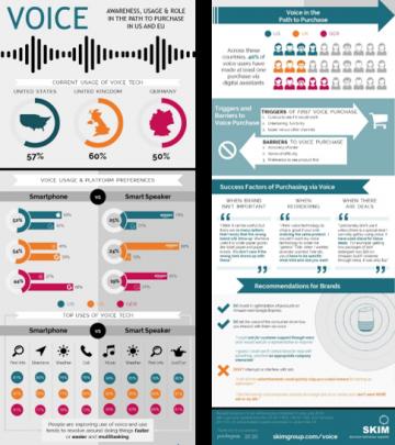 Voice-Infographic-