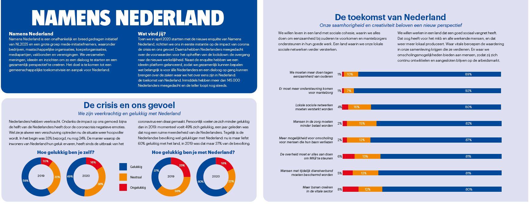 Namens Nederlands McKinsey SKIM conjoint survey
